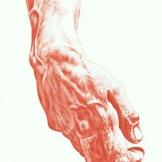 """Bite the hand that feedz"", A4, matita su carta, 2013."